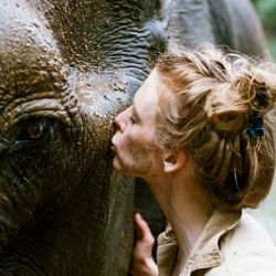 El momento más feliz fue cuando finalmente pudieron sacar a la elefanta de su esclavitud y llevarla al santuario.