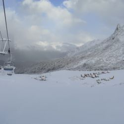 La cuarentena invernal y los centros de esquí al borde de la quiebra | Foto:Cerro Bayo, Cero Catedral, Chapelco