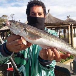 Guillermo Goro exhibe un hermoso ejemplar de róbalo pescado en la bahía. Afortunados los habitantes del lugar.