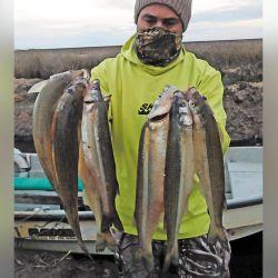 El guía y el famoso ramillete con las mejores capturas obtenidas durante una intensa y esperada jornada de pesca.