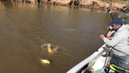 Nuevas correderas en el río Paraná