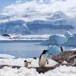 En general, las temperaturas medias del Polo Sur varían entre los -60 °C en invierno y hasta los -20 °C en verano.