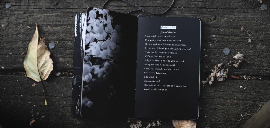 Danna Clark: El poder de la poesía en tiempos de coronavirus