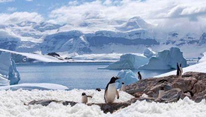La Antártida se está calentando tres veces más rápido que el resto de la Tierra