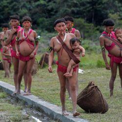 Los miembros del grupo étnico yanomami, algunos de ellos con máscaras faciales, se ven en un pelotón fronterizo especial, donde se realizan pruebas para COVID-19, en la tierra indígena de Surucucu, en Alto Alegre, Brasil. | Foto:NELSON ALMEIDA / AFP)