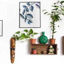 Tips ideales para el hogar.