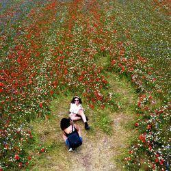 Esta fotografía aérea muestra a personas tomando fotos de sí mismas mientras caminan en medio de campos de lentejas y flores de amapola cerca de Castelluccio, un pequeño pueblo en la región central de Italia en Umbría.   Foto:Vincenzo Pinto / AFP