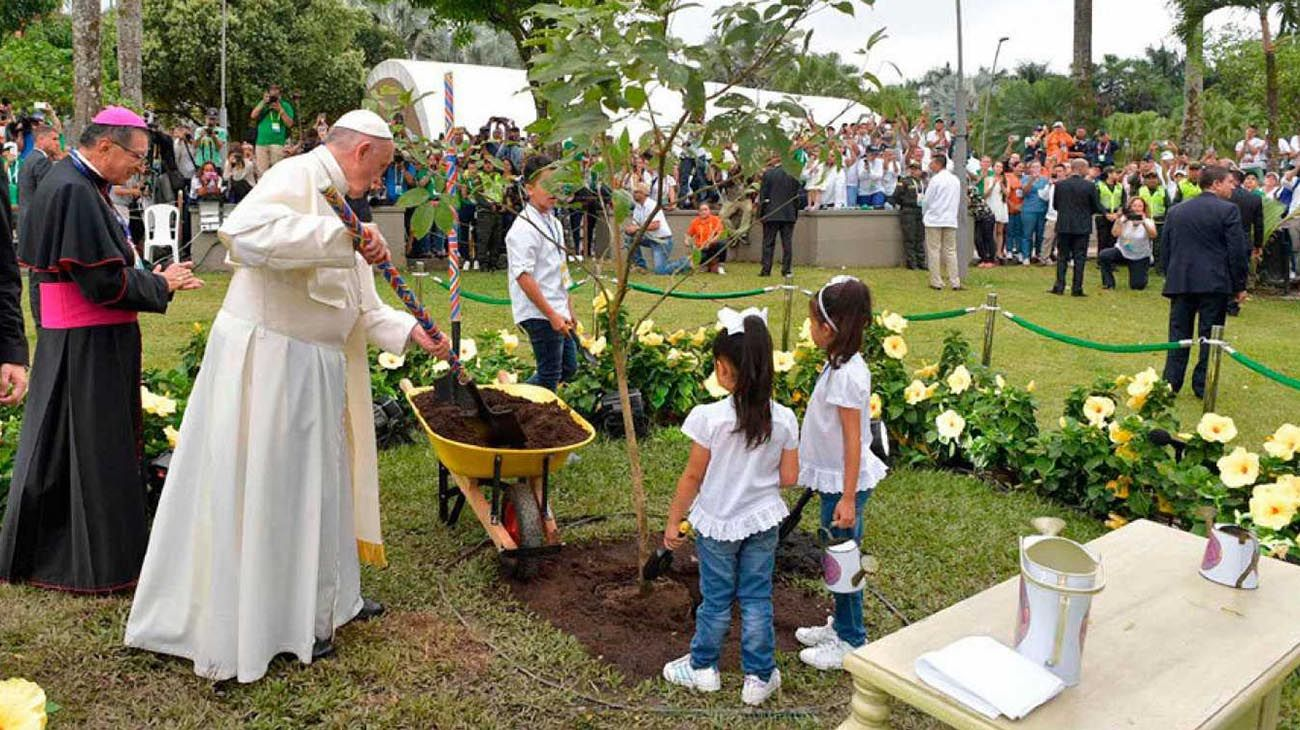 Papa Francisco ecologia