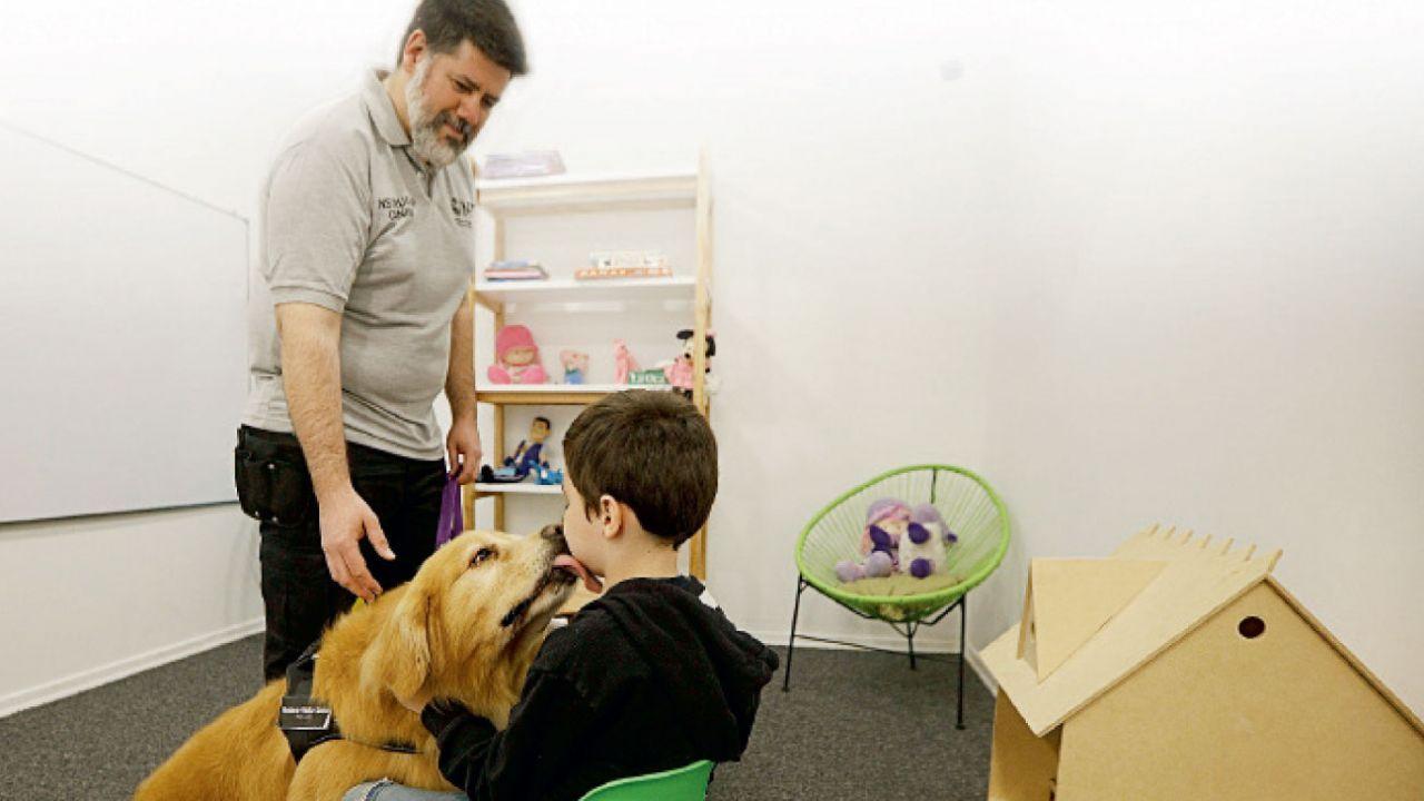 Titan perro de asistencia judicial | Foto:MPT