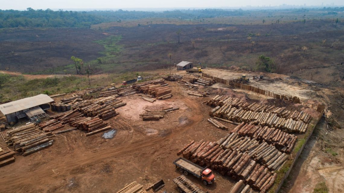 Dozens of Brazilian corporations are calling for a crackdown on illegal logging in the Amazon rainforest, expressing their concerns in a letter Tuesday, July 7, 2020, to the vice president, who heads the government's council on that region.