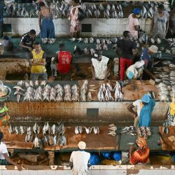 Esta imagen muestra el mercado de pescado Adjame en Abidjan. | Foto:Issouf Sanogo / AFP