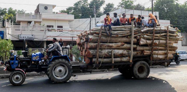 Los trabajadores se sientan en pilas de madera mientras son transportados en un tractor en Amritsar.