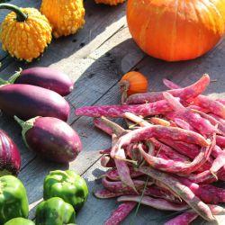 Una dieta abundante en verduras y legumbres es sinónimo de buena salud.
