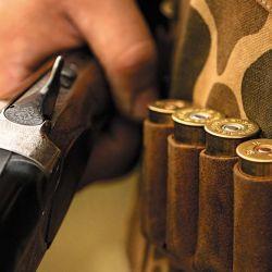Esta modalidad de  caza es privada, pero con el objetivo de vender las presas a un frigorífico especializado. Una buena fuente  de dinero extra.