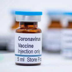 Ni siquiera el hallazgo de una vacuna puede asegurar la extinción total del virus en el mundo.