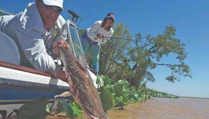 Nuevo protocolo de pesca en Goya