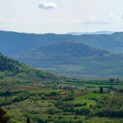 El valle del río Mirna es el paraíso de las trufas. Foto: Anita Arneitz/dpa-tmn