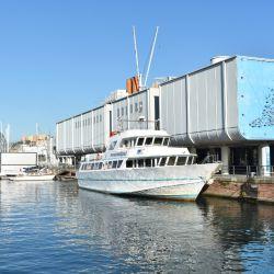 El Galata Museo del Mare relata los viajes de Cristóbal Colón, el navegante nacido en Génova. Foto: Ute Müller/dpa