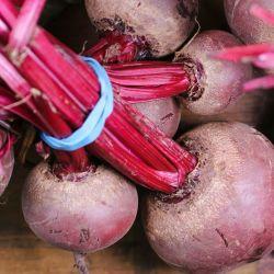 Una las hortalizas más nobles y sencillas para hacer crecer en el hogar.