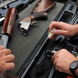 Las escopetas más adecuadas son semiautomáticas del 20 (cartuchos de 26 o 28 g) o 12/70 (28, 32 o 36 g) con munición 7 u 8 sin viento, o 5 a 7 si es que lo hay.