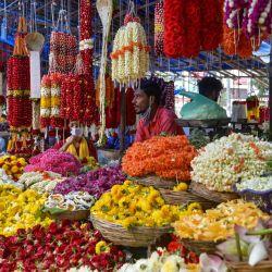 Los vendedores venden guirnaldas de flores en un mercado antes de 'Vara Mahalakshmi Vratha', un ritual hindú realizado para apaciguar a la Diosa de la riqueza y la prosperidad Lakshmi, en Bangalore.   Foto:Manjunath Kiran / AFP