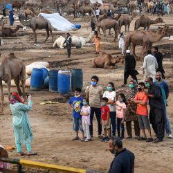 Una mujer toma una fotografía de los miembros de su familia entre camellos en un mercado de ganado antes del festival musulmán Eid al-Adha o el 'Festival del sacrificio', en la ciudad portuaria de Karachi, Pakistán.   Foto:Asif Hassan / AFP