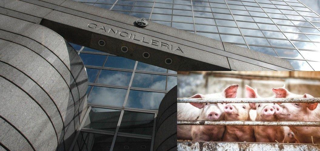 Cancillería recibió a la periodista Soledad Barruti, al investigador Rafael Colombo y a Jóvenes por el Clima por el tema cerdos.
