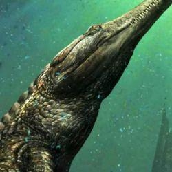 Los restos del Machimosaurus rex hallados en la roca datan de 120 millones de año.