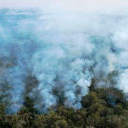 El extenso bioma que abarca tres países latinoamericanos enfrenta los peores fuegos de los últimos 20 años.