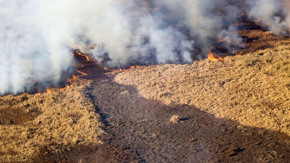 Incendios en la Costa del Paraná