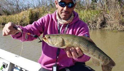 Aun con frío, las primeras tarariras ya picaron en el río Uruguay.