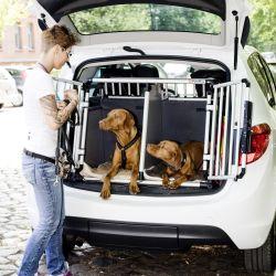 Una jaula de trasporte es el medio más seguro para el viaje en auto de la mascota. Foto: Monique Wüstenhagen/dpa