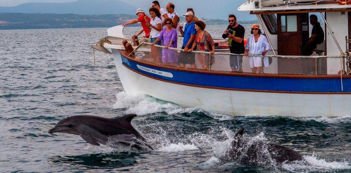 Los turistas toman fotografías durante un tour de observación de delfines desde un barco en el golfo de Amvrakikos, en Preveza, noroeste de Grecia.