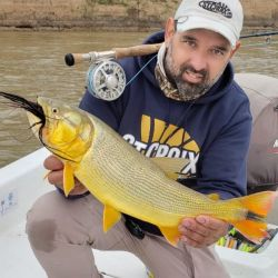 El río Paraná santafecino está con buenos dorados para tentarlos con mosca.