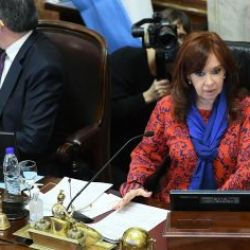 Cristina Kirchner en el Senado | Foto:Cedoc