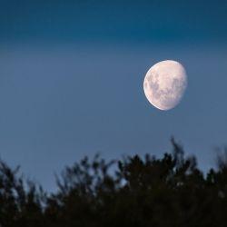 Luna en Tauro, la más placentera