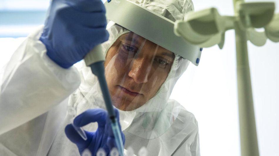 Título: coronavirus, vacuna de covid 20200810