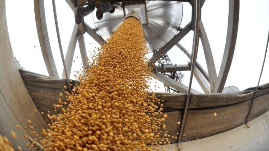 Transporte de granos.
