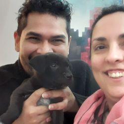 Walter y Ana Clara adoptaron a Killa hace apenas una semana.