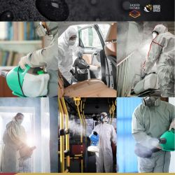 El producto Liquid Guard se vale de la nanotecnología para crear una capa que neutraliza virus y bacterias durante casi un año.