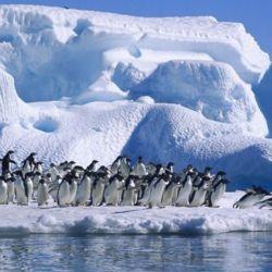 El barco fue hallado por el usuario en las cercanías de la Antártida mientras navegaba por Google Earth.