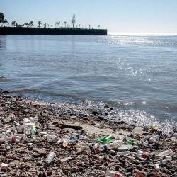El estudio de las aguas del Río de La Plata es el primero que se realiza en lo que va del año.