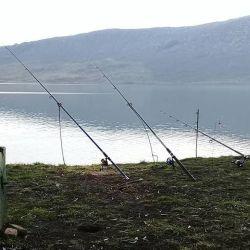 Las mejores fotos de pesca de la semana, relevadas por Jorge Virgilio y Daniel Console para el mapa del pique de Weekend.