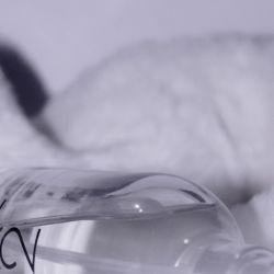 Calvin Klein: así es su fragancia genderless y vegana