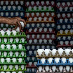 Un hombre revisa los huevos para ver si están rotos mientras los organiza para su entrega en Mumbai. | Foto:INDRANIL MUKHERJEE / AFP