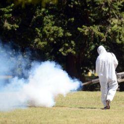 Se está atravesando el brote de dengue de mayor magnitud que se haya registrado hasta el momento en Argentina.