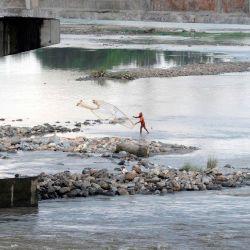 Un pescador captura peces en el canal Teesta en Fulbari en las afueras de Siliguri. | Foto:DIPTENDU DUTTA / AFP