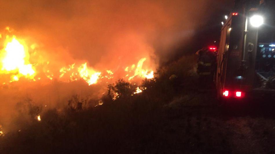 Incendio en el Delta en San Fernando habrían sido intencionales