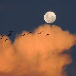 Luna de hoy en Sagitario