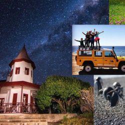 Vuelta al turismo en Madryn.